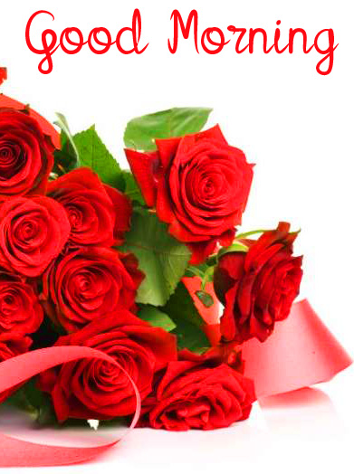 Red Roses Bouquet Good Morning Wallpaper