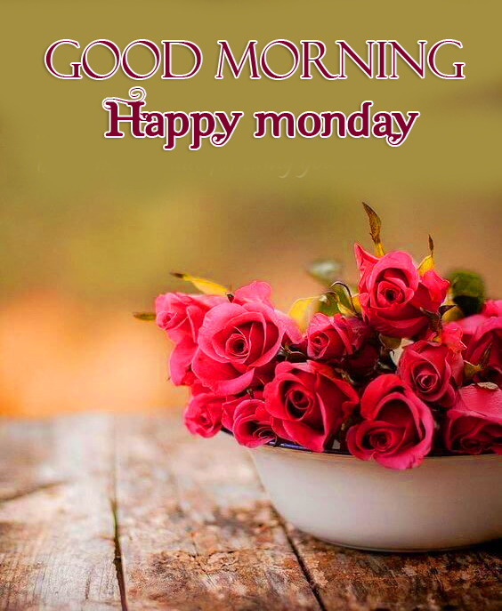 Red Roses Good Morning Happy Monday Picture