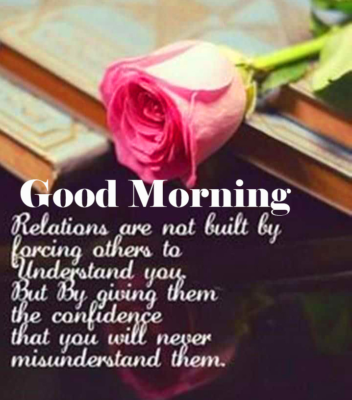 Rose with Quote and Good Morning Wish