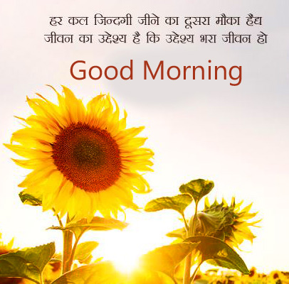 Sunflower Hindi Quote Good Morning Wallpaper