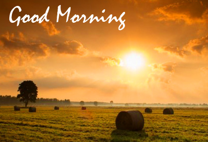 Sunrise Good Morning HD Image