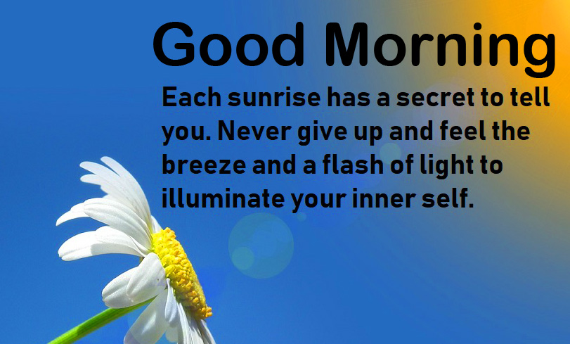 Sunrise Quote Good Morning Picture HD