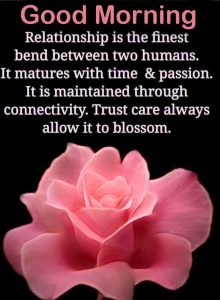 Sweet Relation Quote Good Morning Image
