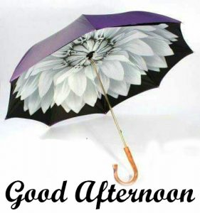 Flower Creative Umbrella with Good Afternoon Wish