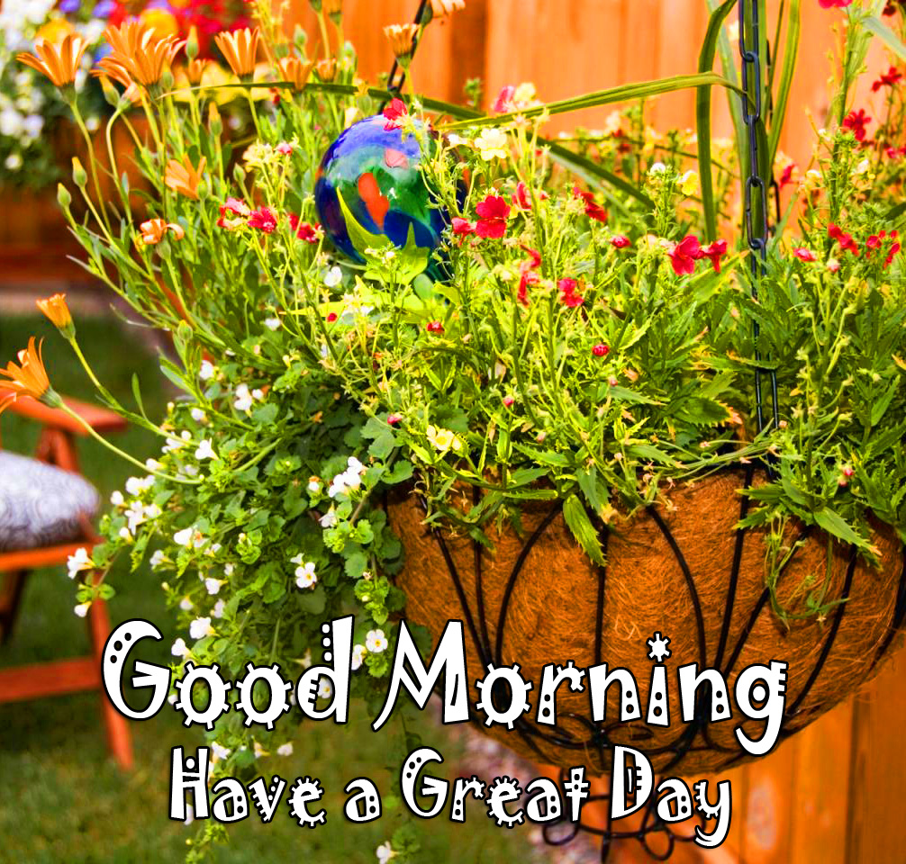 Flowers Basket Good Morning Have a Great Day Picture
