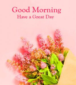 Flowers Good Morning Have a Great Day Greeting Image