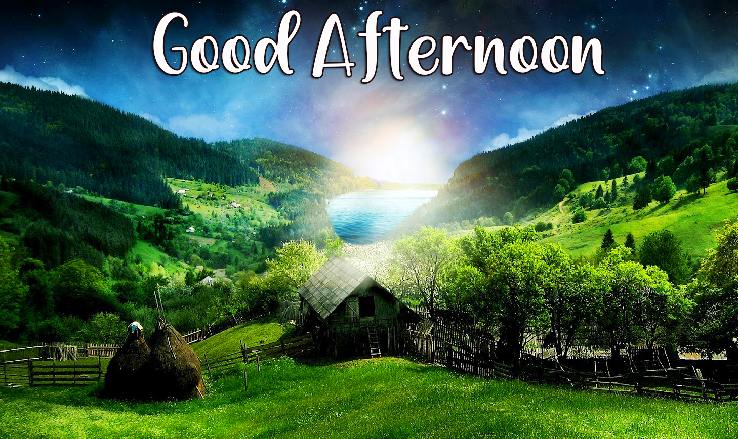 Good Afternoon Sunshine Nature Image