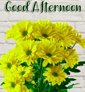 Good Afternoon Yellow Flowers Images