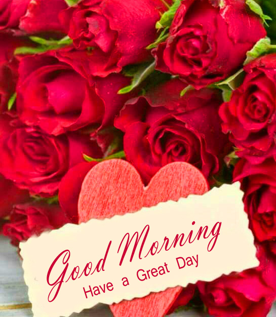 Good Morning Have a Great Day Card with Red Roses