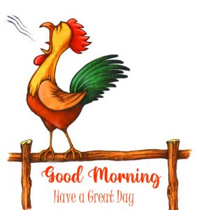 Good Morning Have a Great Day Cartoon Hen Image