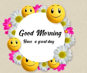 Good Morning Have a Great Day Smiley Faces with Flowers Pic