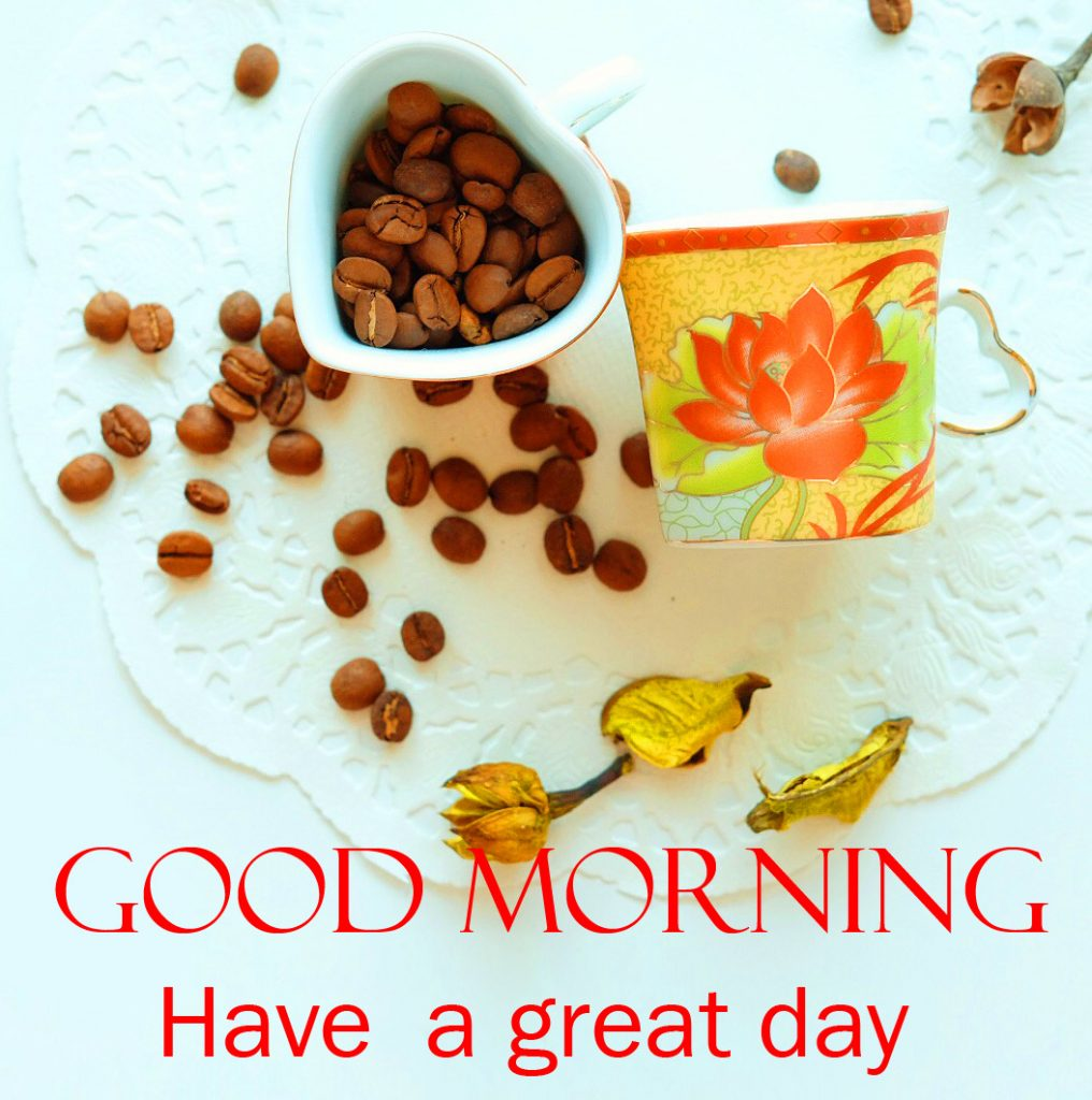37+ Good Morning Have a Great Day Images