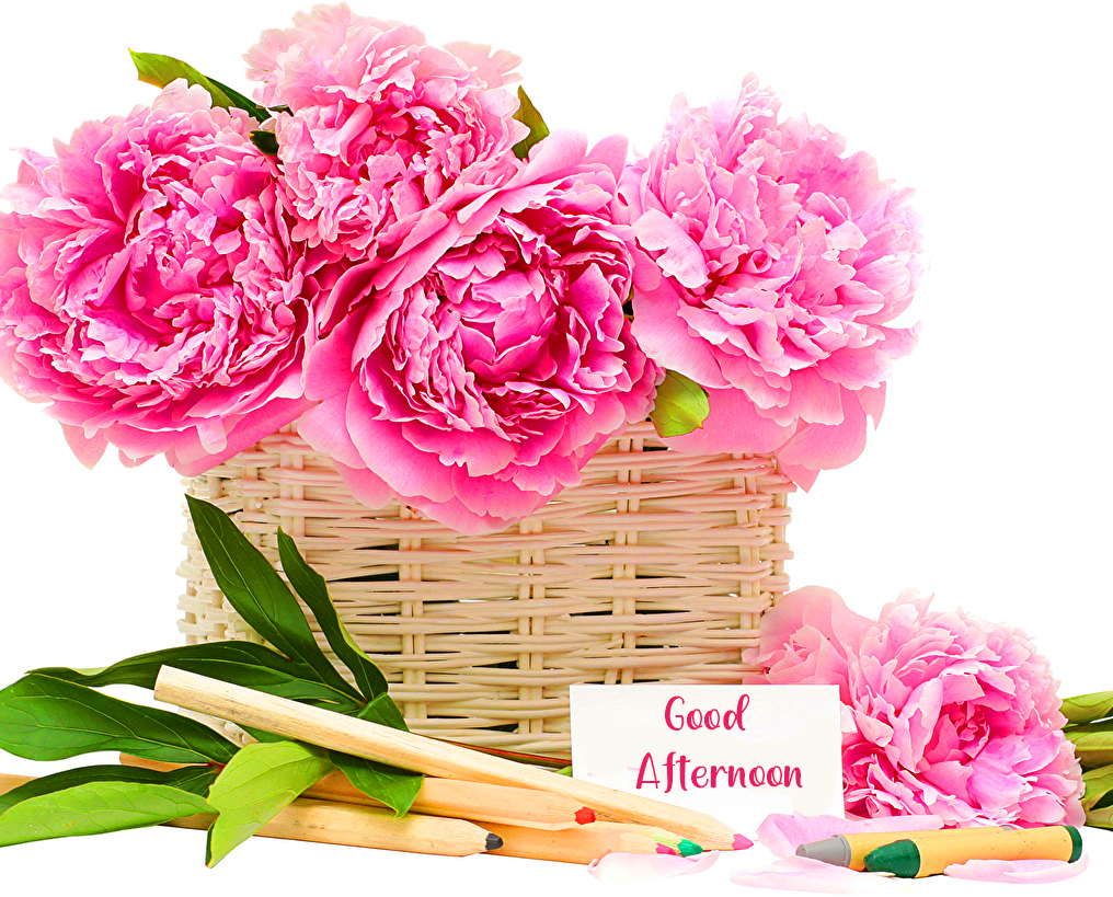Pink Flowers in Basket with Good Afternoon Wish